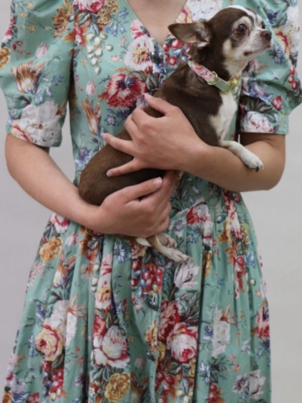 Dogs And Fashion Outstanding Dog Fashion That Makes Our Hearts Beat Faster Hunde Accessoires Hund Zubehor Oktoberfest