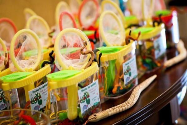 Snake + Reptile Themed Birthday Party Favors. Net, bug jar and plastic reptiles & bugs