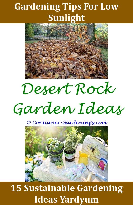 Pin By Rock Garden Ideas On School Garden Ideas Pinterest Herb