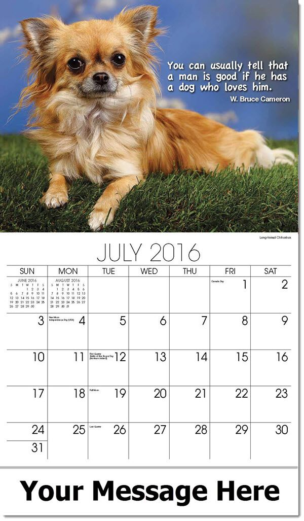 Dog Calendar Ideas : Best ideas about dogs quot man s friend on pinterest