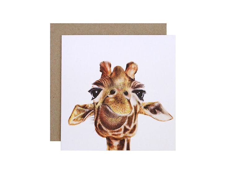 Toby the Giraffe Greeting Card  Birthday, Get Well Soon or Congratulations?  For Me By Dee greeting cards are perfect for any animal lover, for any occasion!  Created and printed in Melbourne, Australia