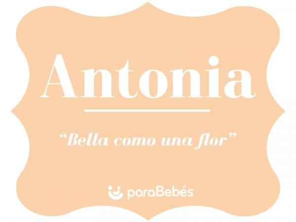 Significado Del Nombre Antonia Origen Personalidad Santoral Popularidad Significados De Los Nombres Origen De Los Nombres Santoral