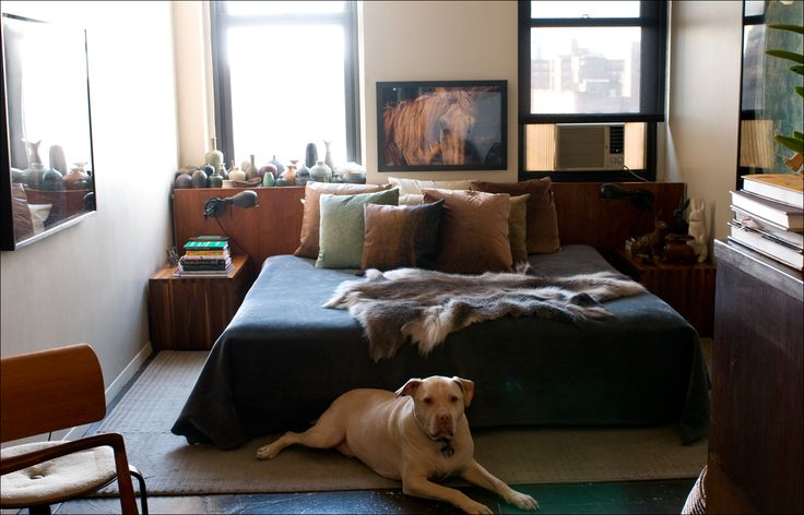 : Spaces, Favorite Places, Boy Bedrooms, Cozy Bedroom, Decorating Ideas, Architecture Interiors, Bewitching Bedrooms, Apartment Ideas, Dog