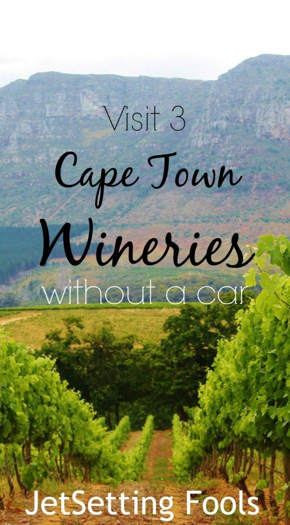 Since we don't drive, we needed to find a way to visit Cape Town wineries without a car. Relying on public transportation to get us there was proving to be an issue. My diligent research yielded zero results for a bus route leading directly to a winery (or better yet, wineries).