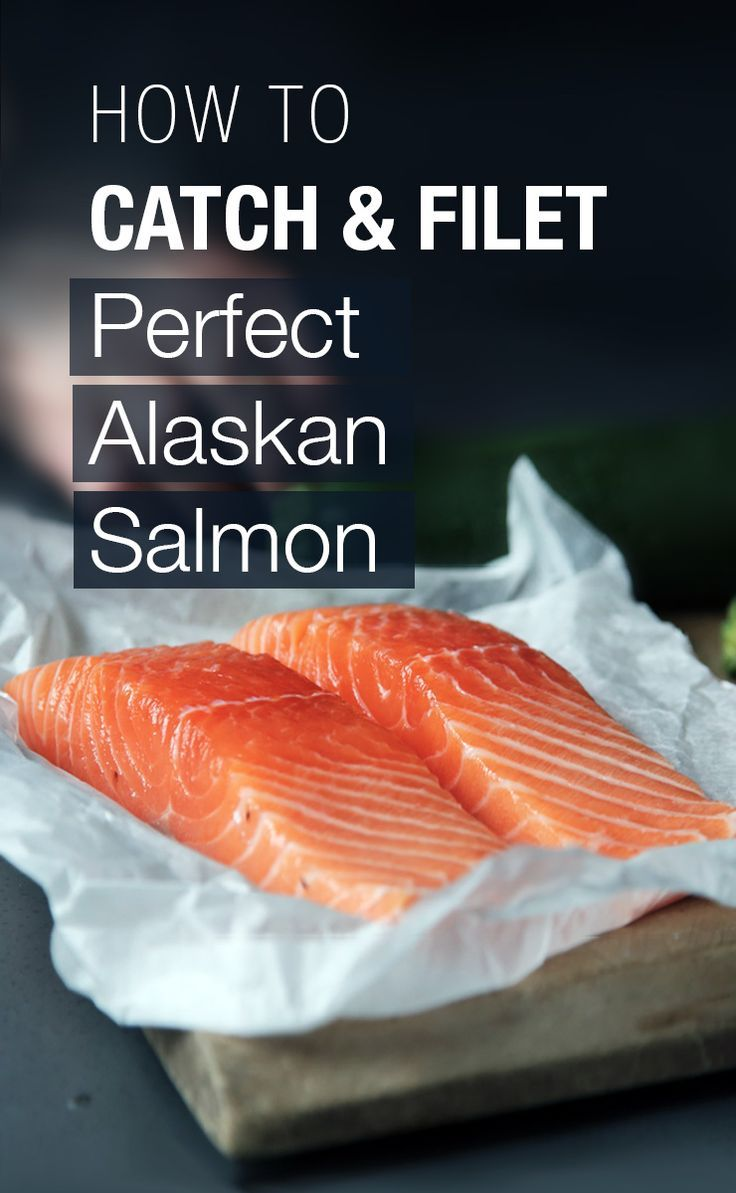How to catch, clean, and fillet Alaska salmon!