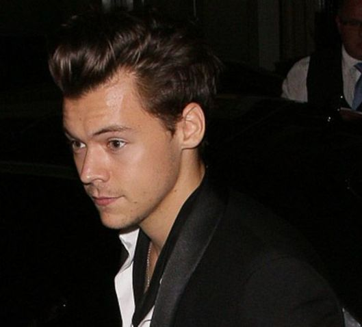 | ONE DIRECTION HARRY STYLES ANNOUNCE HIS SOLO WORLD TOUR 2017 ! | http://www.boybands.co.uk