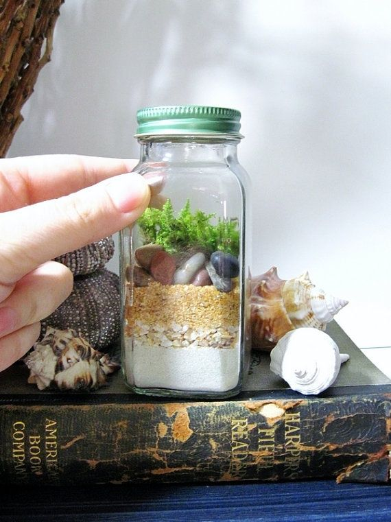 How to Make a Terrarium - Take a Look at these 10 Adorable Ideas diy moss mushrooms gnomes succulents easy diy cute indoor garden container1...