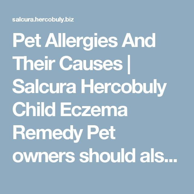 Pet Allergies And Their Causes   Salcura Hercobuly Child Eczema Remedy Pet owners should also participate to help other people with pet allergies. They should bathe their pets regularly. They should be dried completely after that. Researches have proved