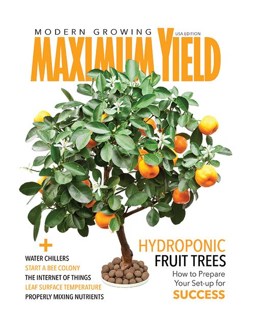 June is here, and so is a new issue of Maximum Yield! In this issue we feature Desert Greens H2O and Sundrop Farms – two companies that are trailblazing innovative ways to grow food. We also include features on how to grow fruit trees hydroponically, monitoring your leaf surface temperature, mixing your own nutrients, avoiding algae in the grow room, and the benefits of water chillers. Rounding out the issue are recipes for making homemade pesticides, instructions for pricing out an indoor…