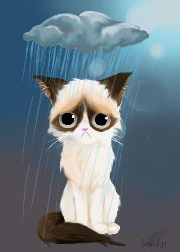 grumpy cat wedding invitations%0A anyway it u    s grumpy cat Carrying A Thunderstorm