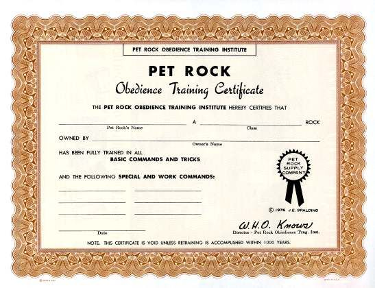 16 best Rock Climbing Party images on Pinterest Rock climbing - fresh cat birth certificate free printable