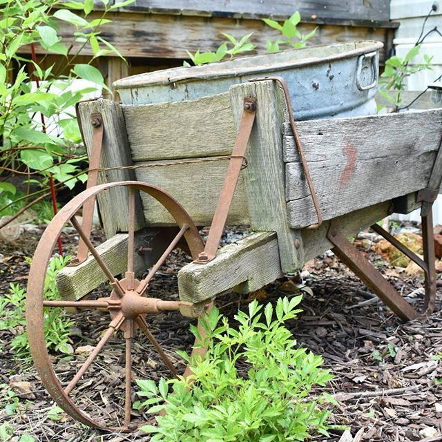 www.flatcreekfarmhouse.com Old wooden wheelbarrow with galvanized washtub to hold flowers. Will be filled with beautiful hosta, Lobelia, Geranium, and Ivy.