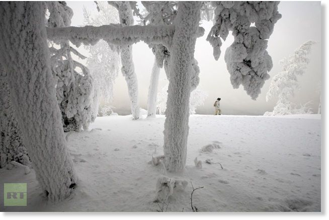 A woman walks past trees covered with heavy hoarfrost and snow on the bank of the Yenisei River, with the air temperature at about minus 26 degrees Celsius (minus 14.8 degrees Fahrenheit), outside Russia's Siberian city of Krasnoyarsk, December 24, 2012.