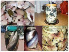 12 Рецептов домашнего посола скумбрии, сельди, кильки и мойвы