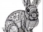 Display image coloring-adult-difficult-rabbit