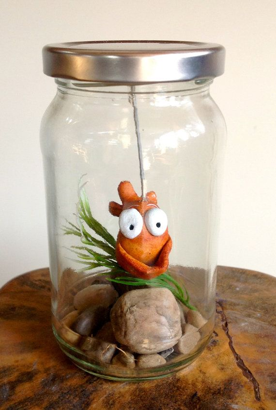18 best images about jam jars on pinterest school treats for Fish in a jar
