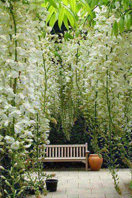 Love this.... Hanging flowers in the garden and a bench to admire them.
