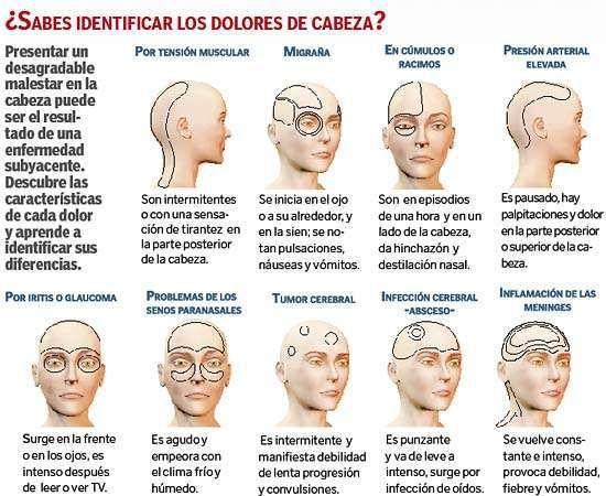 :: eliax.com - Cómo identificar los dolores de cabeza según la región en donde te duela