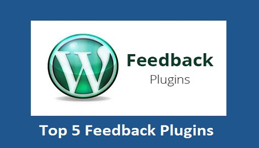 Top 5 Feedback Plugins for WordPress Site