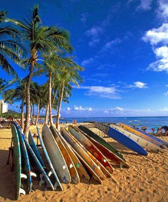 Waikiki Beach: Dreams Home, Blue Sky, Surfing Boards, Surfing Up, Surfboard Waikiki, Waikiki Beaches, Beaches Trips, Bali Surfboard, Surfboard Repin By Pinterest