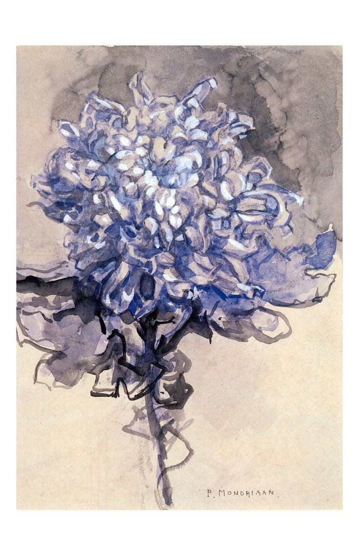 "tierradentro: "" ""Chrysanthemum"", 1909, Piet Mondrian. """