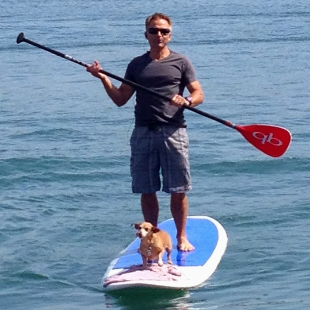 Paddle boarding with dog...