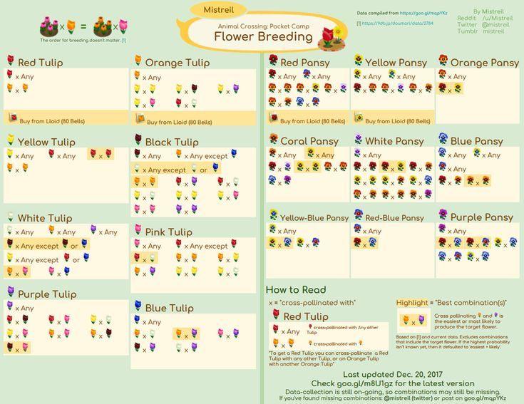 Animal Crossing Pocket Camp Referenzhandbuch Erklart Die