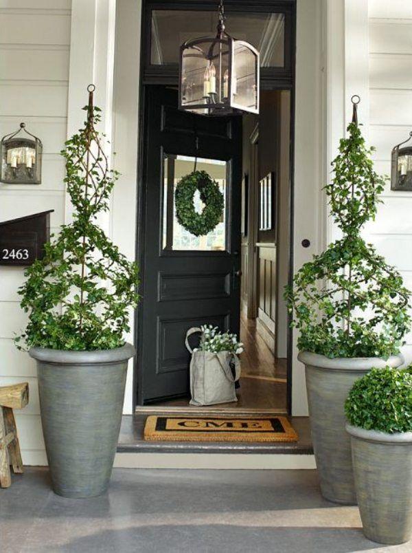 porte d'entrée décorée de plantes vertes et suspension-lanterne