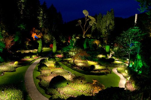 Light up your garden at night with soft lighting accentuating the final details in your garden and keeping it in dark mysterious shadows exotic