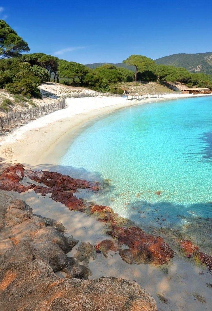 La magnifique plage de sable blanc et d'eau transparente Santa Giulia, Corse