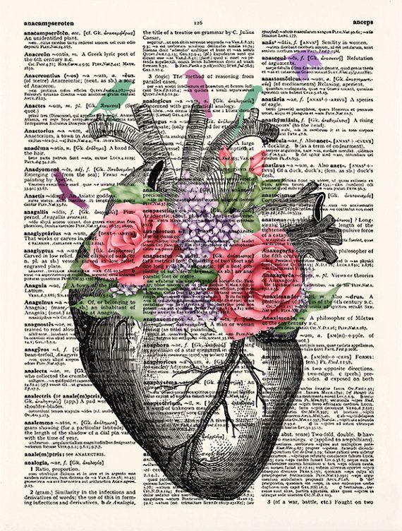 Imprimir imprimir corazón anatomía de corazón, pájaros flores Poster, Diccionario arte, aves, arte de anatomía del corazón, corazón de la pared arte, decoración de la pared, 480  COMPRA 3 IMPRESIONES, 1 IMPRESIÓN TOTALMENTE GRATIS! *** o COMPRA 5 COPIAS, 2 COPIAS TOTALMENTE GRATIS! ***.. etc....  Para obtener la oferta, compra al menos 3 impresiones y ponerlos en tu carro, entonces en el cuadro de notas al vendedor sobre pedido indicar su opción para su print(s) LIBRE. Por favor…