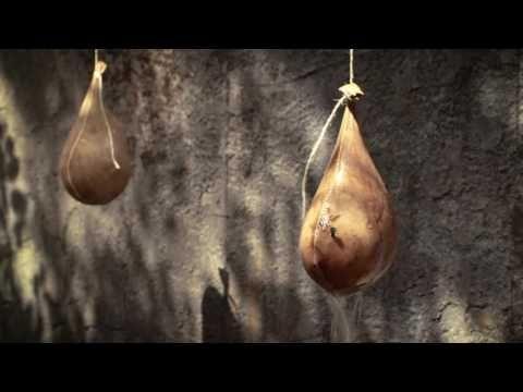 Pim Wessels onthult trailer van zijn debuutfilm