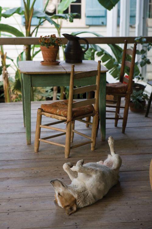 Bayou Beauty: A Southern Cottage Home