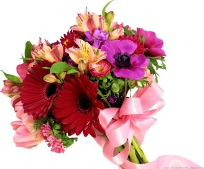 Sending Next Day Flowers Online Is Easy, http://recenthealtharticles.org/688437/encounter-a-favorable-effect-to-life-with-flowers-tomorrow-distribution/, Deliver Flowers Tomorrow,Flower Delivery Next Day,Flowers Delivery Next Day,Flowers Tomorrow,Cheap Ne