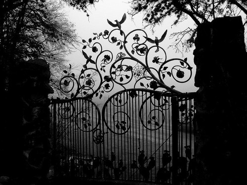 Iron gate in the shadows