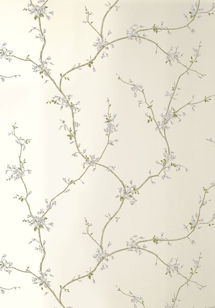 Buds Pearl T8643 Collection Shangri La From Thibaut