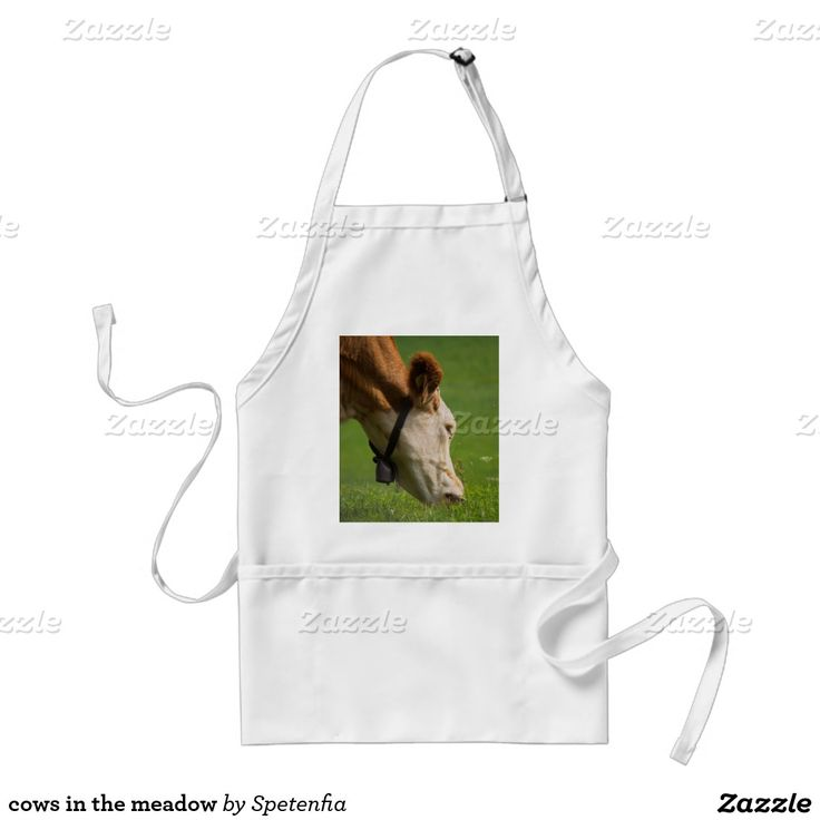 cows in the meadow standard apron