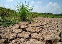 Изменение климата создаст дефицит воды! - Бизнес новости и пресс-релизы компаний - My Press-Release - Последние новости бизнеса за сегодня