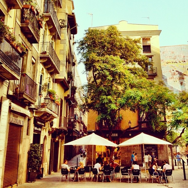 Go to one of the two good restaurants/tapas bars, at   Placa Olles 5, right behind the church Santa Maria Del Mar. Cal Pep or La Catalana 2.