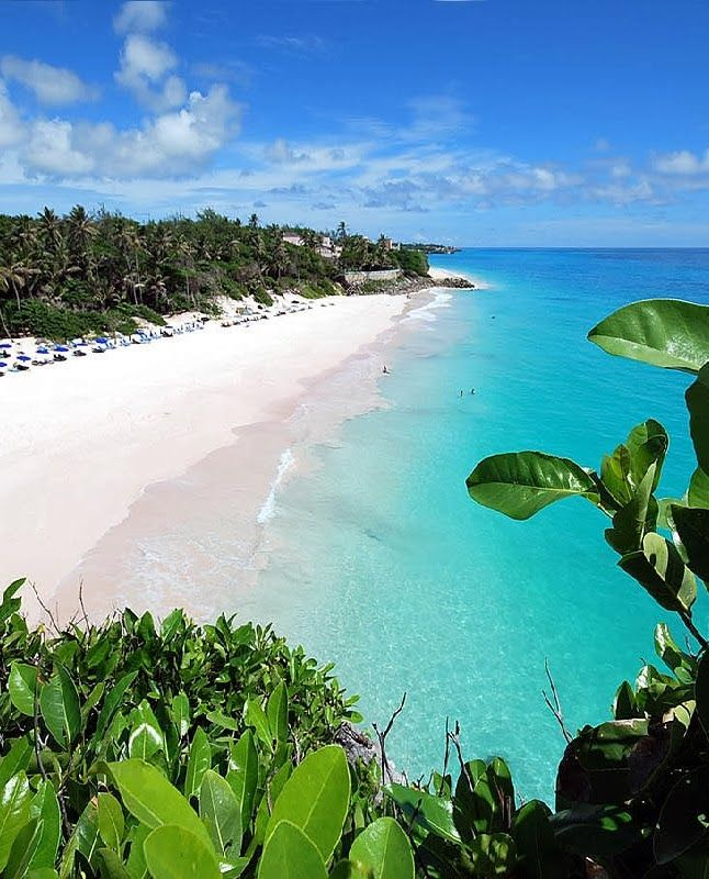Take a beach break in Barbados.Best Beach, Favorite Places, Beautiful Barbados, Beautiful Places, Cranes Beach, Travel, Beach Barbados, White Sands Beach, Caribbean Islands