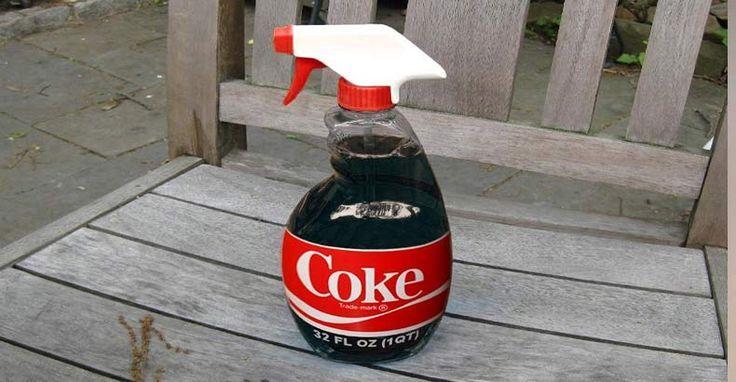 Cola verwijderd eenvoudig roest! Aangebakken pan? Laat het weken in cola en je haalt het er zo af. Heb je bloed op een shirt, laat het vlekje weken in de cola en gooi het in de wasmachine. Koper poets je heel mooi op met cola. Heb je een foto die je antiek wil maken? Dip de foto in een bakje met cola en laat hem drogen. Je hebt nu een prachtige vintage look. Ook stiftvlekken haal je eenvoudig uit je shirt met water. Gele rand in je toilet? Giet er een blikje cola in enz......