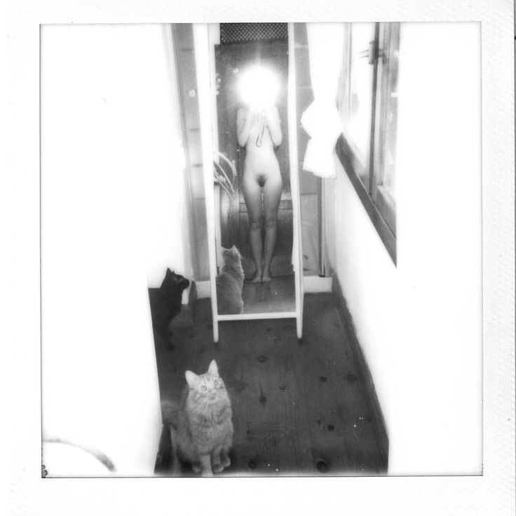 "Polubienia: 313, komentarze: 7 – Paula Codoner (@paulacodoner) na Instagramie: ""#polaroid #impossibleproject"""