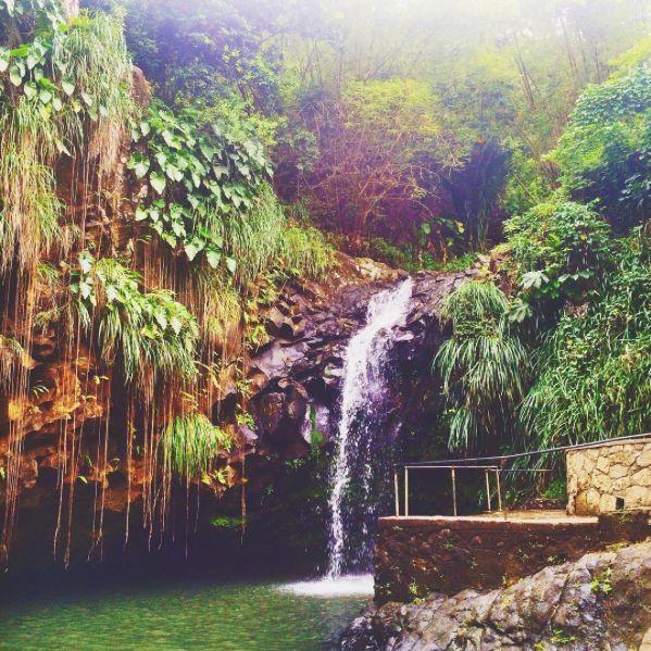 Life needs better shower heads. #Barbados Photo by @shantella_bella