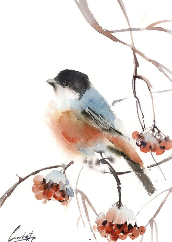 Bullfinch Painting Bird Watercolor Painting Original Watercolour