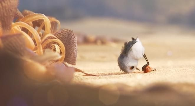 """If you saw """"Finding Dory"""" and didn't get to the theater late, you've probably already seen """"Piper."""" But now you can watch the adorable and visually breathtaking short online. (Sorry for the janky embed)"""