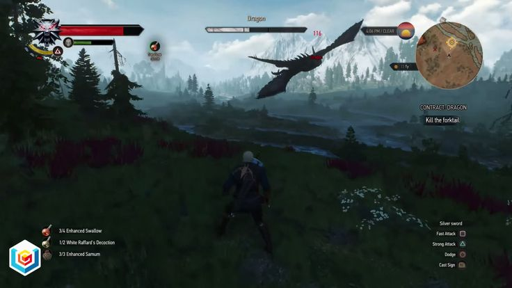The Witcher 3 Wild Hunt Dragon Witcher Contract Quest Walkthrough – VGFAQ