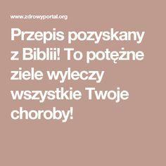 Przepis pozyskany z Biblii! To potężne ziele wyleczy wszystkie Twoje choroby!