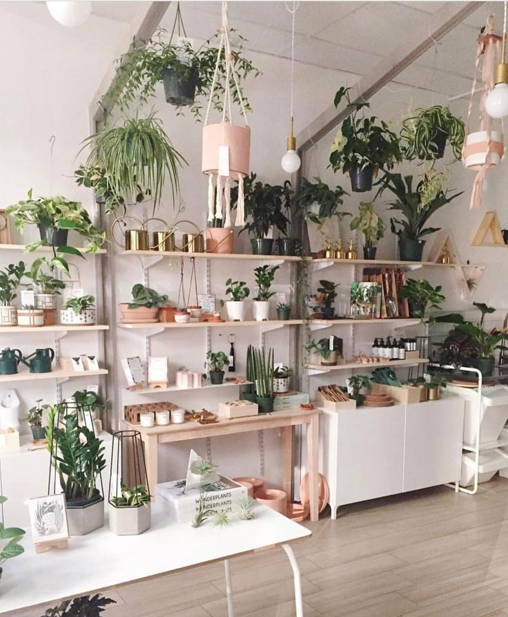 """15.8k Likes, 70 Comments - The Jungalow™ (@thejungalow) on Instagram: """"Our friends over at @foliacollective in Pasadena sure know how to make a pretty store! They are…"""""""