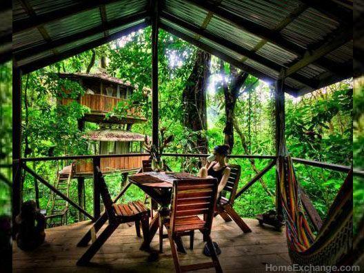 ¿Qué podemos decir? Nos apostamos lo que sea a que no hay mucha gente que pueda presumir de haber pasado el fin de año en un árbol. #arbol #treehouse #costarica