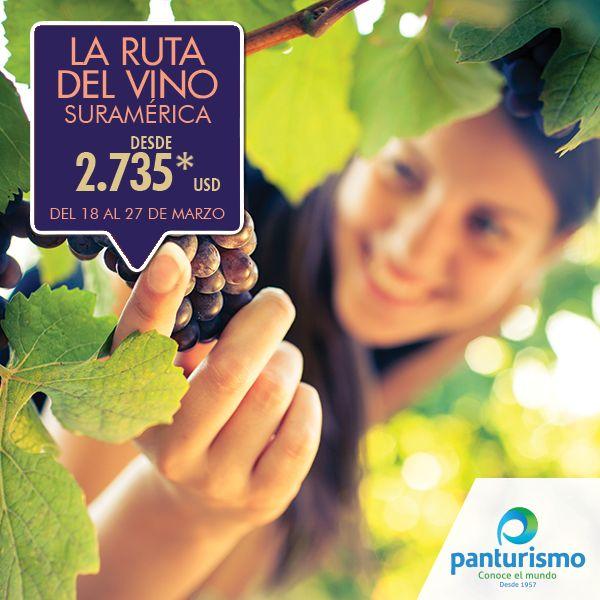 Visita las mejores bodegas y restaurantes en La Ruta del Vino en Colchagua, Santiago, Mendoza y Buenos Aires. Más información en www.panturismo.com o llámanos en Cali al 668 2255 y en Bogotá al 606 9779.